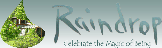 Raindrop, Celebrate the Magic of Being